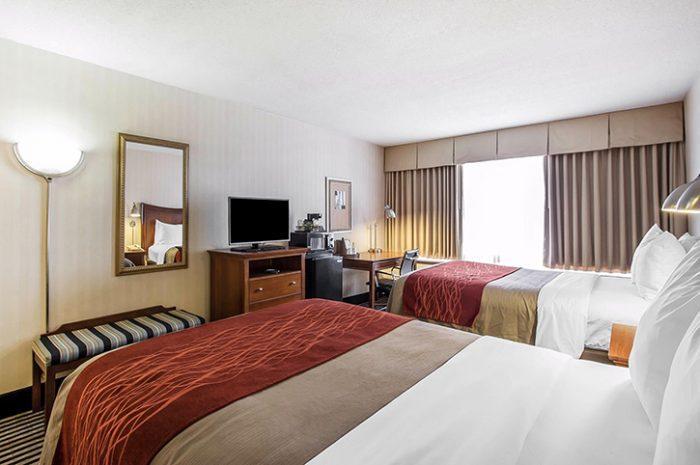 Twin Room Comfort Inn
