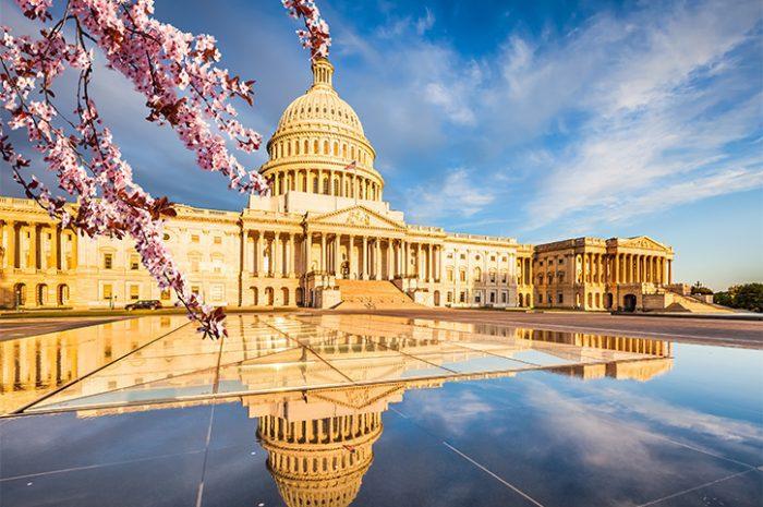 US Capitol, Washington D.C.