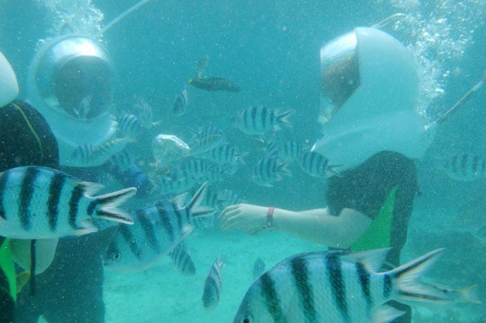 Undersea Walk, Mauritius