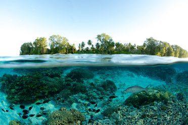 Undewater World, Seychelles