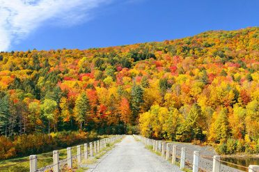 Vermont In The Fall, New England