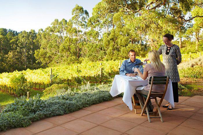 Couple at Vineyard, South Australia