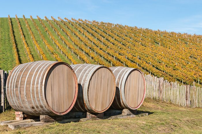 Vineyard Barrels
