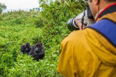 Volancoes National Park, Rwanda