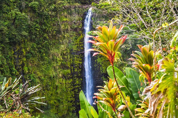 Waterfall, Hawaii