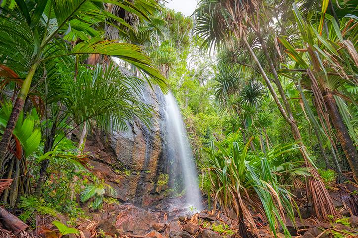 Waterfall in Praslin Island