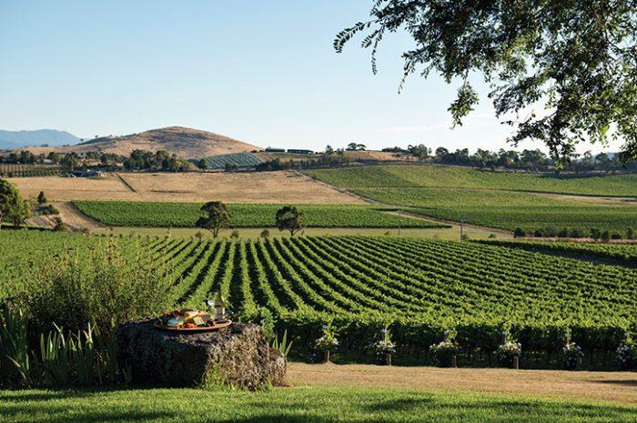 Winery, Victoria