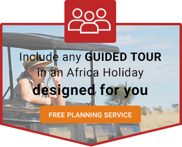 Africa Guided Tours